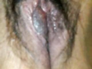 panocha mexicana peluda